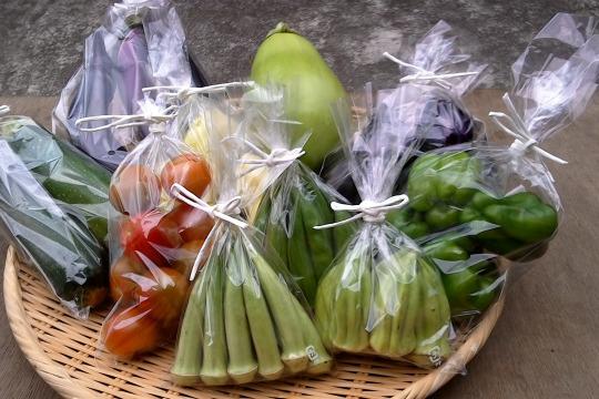 旬の自然栽培野菜詰め合わせ(Mセット)