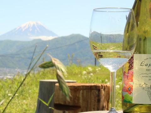 【720㎖2本】御勅使川扇状地が育む南アルプス飯野産甲州ぶどうの白ワイン「LaputaCRYSTAL」