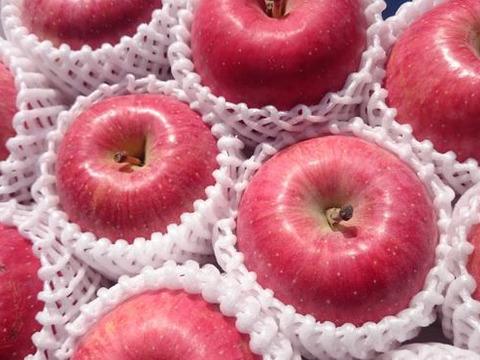 春の蔵出しりんご【特選】2キロ(6玉入り)