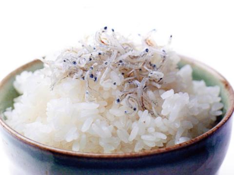 ちりめん【小魚】たっぷり500g家庭用がお得!乾燥が絶妙賞味期限60日