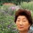 京見の森自然食品