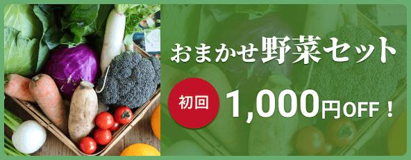 おまかせ野菜セット 初回1000円OFF!