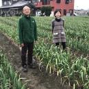 M'S農業