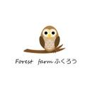 Forest farm ふくろう