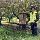 日本ミツバチ 8ハチ|HOnEy