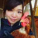 上田養鶏場