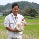 かしわ・鶏刺し専門店 大摩桜 生産農場直売所