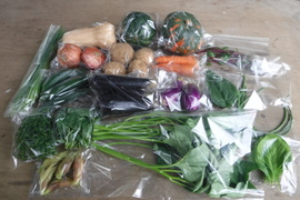 野菜ボックス Sサイズ約6~7品