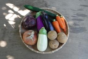 夏のカレー用野菜セット Sサイズ