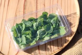 マイクロ野菜4種セット