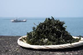 【有明産】海の恵みがたっぷり詰まった漁師のこだわり焼きバラ干し焼き海苔