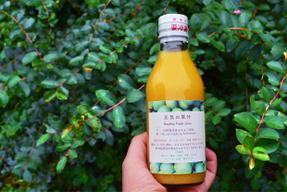 【自然栽培青みかん100%】6本セット 『元気の果汁』200ml ※お得なセット販売あり 予約開始