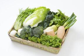 旬のおまかせ野菜セット[Mサイズ]