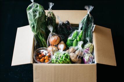野菜セット Lサイズ【8〜10品】
