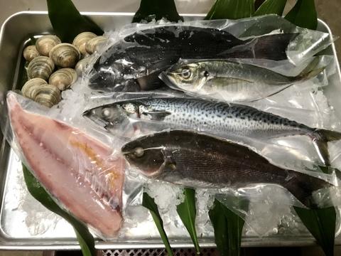 漁師のおまかせ鮮魚セット【冷凍】