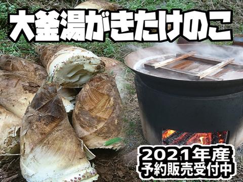 【2021年産予約】大釜湯がきたけのこ(1.5Kg)