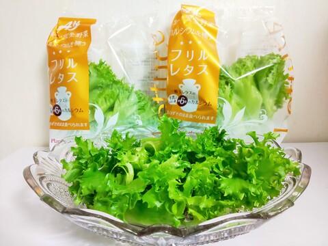 レタスでカルシウム補給!牛乳と同等のカルシウムを含み、一般レタスの約6倍!さらに約9倍のβ-カロテンを含むフリルレタス10袋セットです【栽培期間中無農薬・完全閉鎖型水耕栽培】