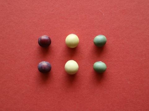 《今月のお買い得品》【さらだ豆 200g】赤・白・青で料理をぐんと華やかに