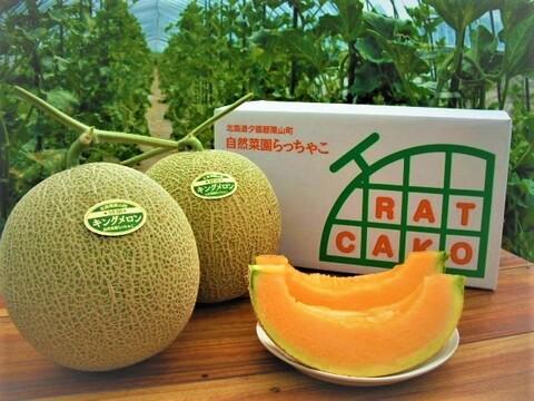【農薬・化学肥料不使用】北の森が育てた完熟キングメロン2玉(2.8kg~)