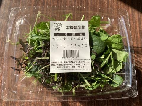 JAS認証 有機栽培 栄養たっぷり!食べるエステ ベビーリーフ(50gを20パック)