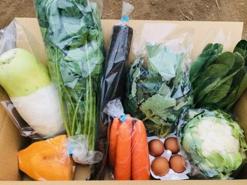 けのひの旬の野菜セット(7~8品目)+平飼い卵(4玉)