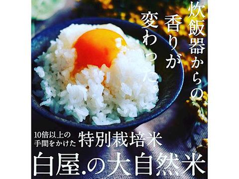 炊飯器からの香りが変わった!大自然米