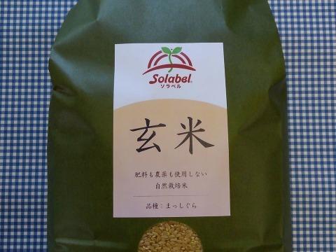 【セット】♥️玄米5kg・小豆500g・黒大豆500g♥️