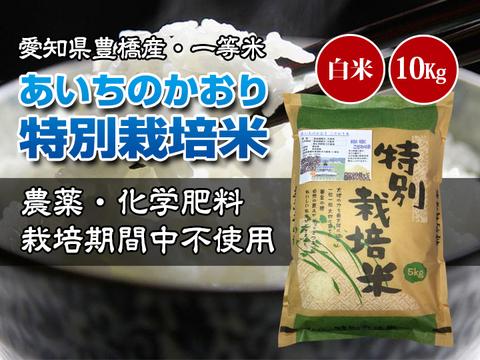 【農薬不使用・一等米】愛知県産 あいちのかおり 白米10kg(5kg×2袋)
