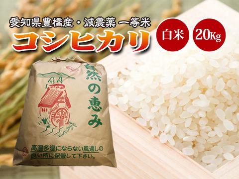 【減農薬・一等米】令和2年 愛知県産 新米 コシヒカリ 白米20g(10kg×2袋)