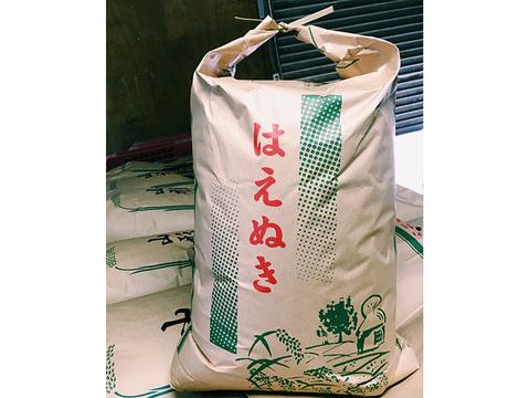 【令和元年新米】【玄米】はえぬき 5kg 山形県飯豊町産減農薬栽培米