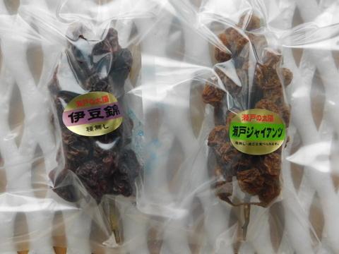 枝付き房ごとまるまる干しブドウ2房(伊豆錦、瀬戸ジャイアンツ)