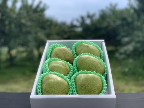 【訳あり洋梨 品種おまかせ!】 約2㎏ ご家庭用やおすそ分けに丁度いい!R1ー01