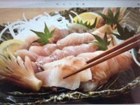 極ウマ❗️獲れピチ鮮魚のお刺身切り身