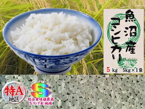 南魚沼産コシヒカリ乾式無洗米5kg令和2年産🌾