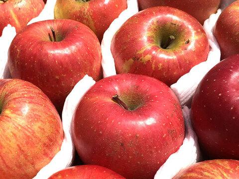 りんご 2020年産 サンふじ  【訳あり約2㎏】約5-9玉