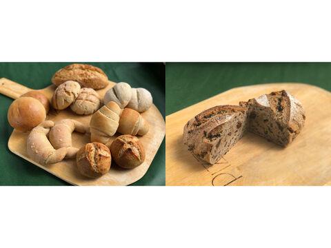 【超貴重な有機JAS認証パン】パンセット④+シュヴァルツベルク:麦の栽培から一貫生産 自然栽培小麦のみ使用したパンセット + シュヴァルツベルク