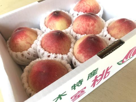 【家庭用】温室桃はなよめ計900g(6〜9個入り)