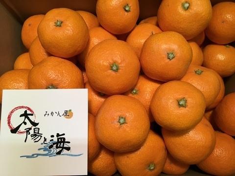 愛媛みかん☆石地☆ご家庭用☆混合☆3kg