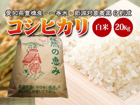 【節減対象農薬6割減・一等米】コシヒカリ 白米20g(10kg×2袋)【令和2年・愛知県産】
