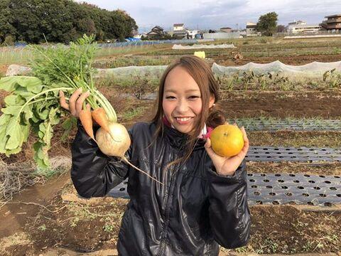 【千葉県産】綾善の野菜詰め合わせ M(8〜10品)