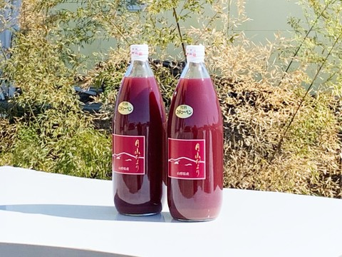 【果物王国 山形から】完熟ぶどうをそのままジュースに!100%ストレートぶどうジュース1,000mlx2本セット