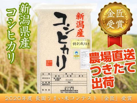 【金匠受賞】令和2年産新潟県認証特別栽培米コシヒカリ15kg(5㎏×3袋)