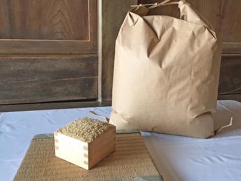 新米コシヒカリ玄米5kg 新米予約