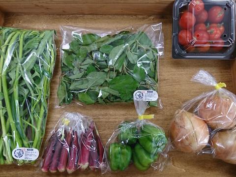 季節野菜のお楽しみセット(6-7品目)