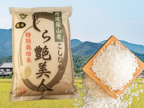お米マイスターが作る旨みたっぷりの丹波篠山米こしひかり5㎏【R1年産】