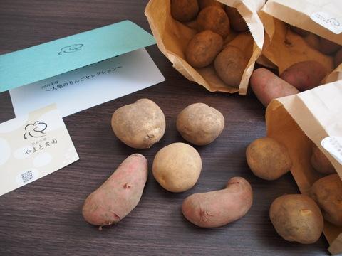 【定番〜幻の馬鈴薯2021】3種食べ比べセット(1.5kg/レシピ付)