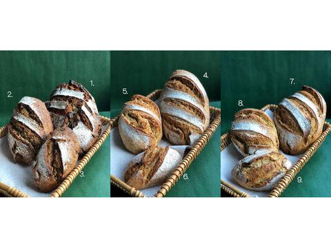【お好みの商品をお好きな数で注文できます】フルオーダーパンセット:麦の栽培から一貫生産 自然栽培小麦のみ使用したパンのフルオーダーセット