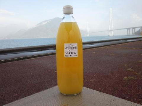 【在庫一掃セール 50%オフ】愛媛県産いよかん(伊予柑)ジュース3本セット