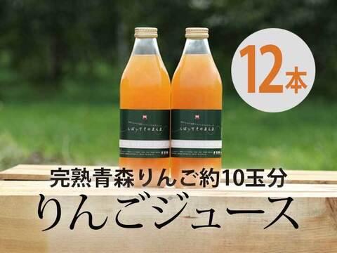 完熟青森りんご100%【しぼってそのまんま】濃厚りんごジュース(1L×12本入)