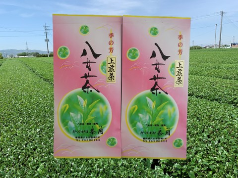 【ネコポス便】(国産)緑茶 八女茶 上煎茶100g【2袋】